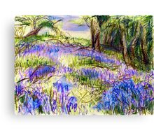 Bluebells by Dolfor Rd, Pen & Pencil Artwork Canvas Print