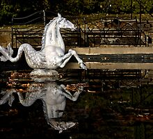 The Sea Horse at Winterthur by cclaude