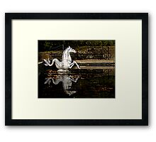The Sea Horse at Winterthur Framed Print