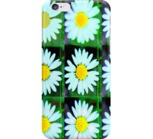 Daisy iPhone case iPhone Case/Skin