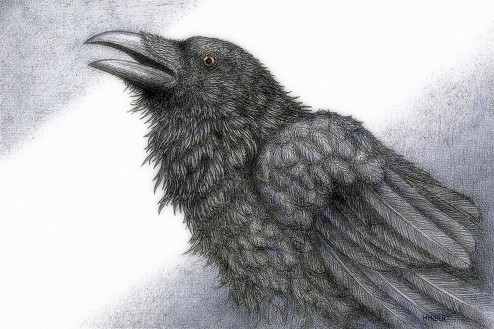 Poetic crow by Indigo46