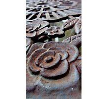 Heavy Rose Photographic Print