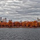 Central Park Reservoir Panorama Fall 2011 by Robert Ullmann