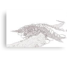 Linklater Dry Stone Bridge Canvas Print