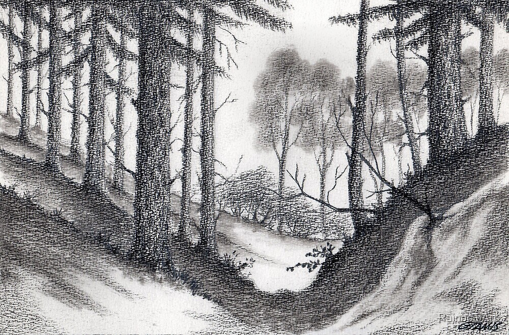 Through A Look In The Forest - Conté Drawing by RainbowArt