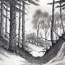 Through A Look In The Forest - Cont Drawing by RainbowArt