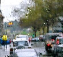 Rainsoaked by Linda Sparks