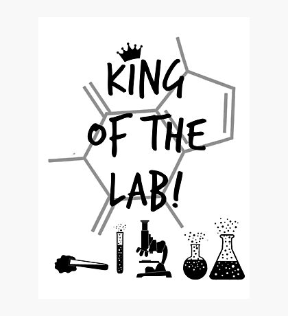 King of the Lab! 3  Photographic Print