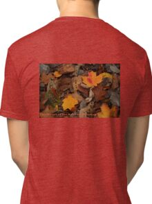 The Heart of the Leaf Grows Red Tri-blend T-Shirt