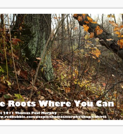 Take Roots Where You Can Sticker