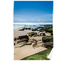 Beach with Mossy Rocks Poster