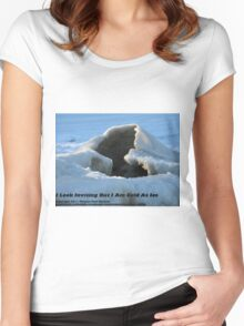 I Look Inviting But I Am Cold As Ice Women's Fitted Scoop T-Shirt