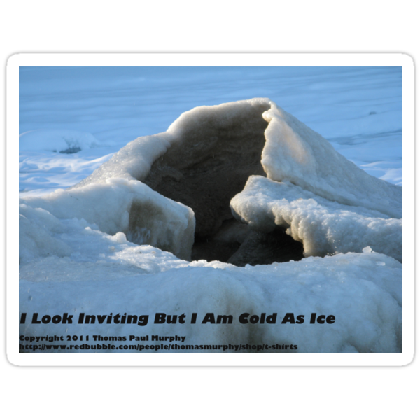 I Look Inviting But I Am Cold As Ice by Thomas Murphy