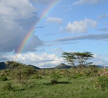 Samburu  landscape 3 by sharkyvin