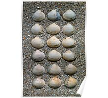HEART SHELLS ON SAND Poster