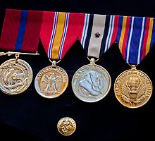 Medals - Veterans Day NYC 11/11/11 by Robert Ullmann