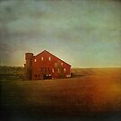 Rustic Red Barn  by Olivia Joy StClaire