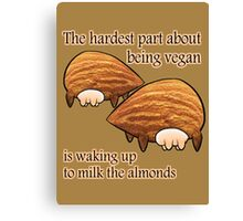 Waking up to milk the almonds Canvas Print