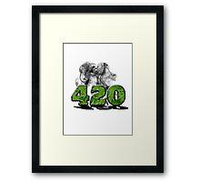 420 HAZE Framed Print