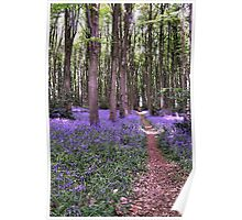 Vibrant Sea of Bluebells in a Rustic British Woodland Watercolour Scene Poster