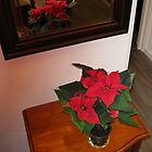 Poinsettia Reflected by BlueMoonRose