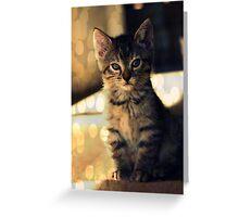 Dreams & Sweetness Greeting Card
