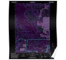USGS Topo Map Washington State WA Willard 244716 1994 24000 Inverted Poster