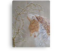 My furry friend Canvas Print