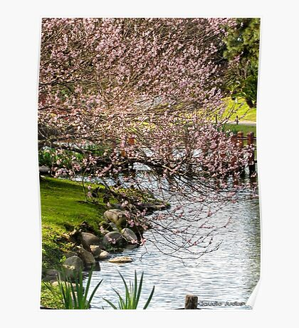 Japanese Gardens - Buenos Aires Poster