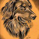Dog Portrait by WienArtist