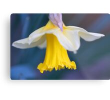 Dancing Daffodil Metal Print