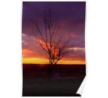 Winter Sunset on the Prairies 2 Poster