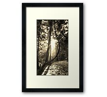 Twisted Genius Framed Print