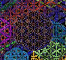 Sacred Geometry iPhone Case by John Paul Polk