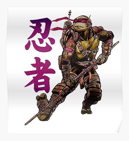 Ninjutsu TMNT Poster