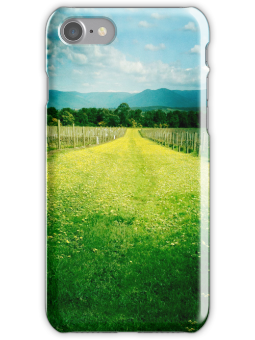 Winery iPhone Case by graphicasylum
