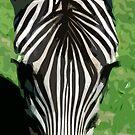Zebra Kiss by Jody Saturday