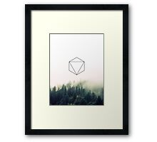 The Forrest Framed Print
