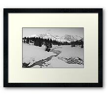 Winter view (b&w) Framed Print