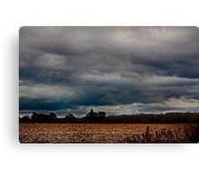 Stormy Countryside Canvas Print