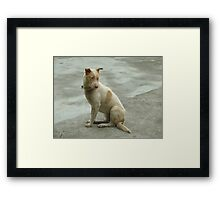 I/m innocent Framed Print