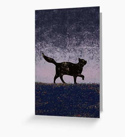 Cat in the Night Greeting Card