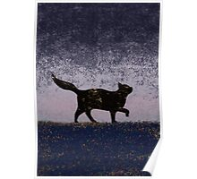 Cat in the Night Poster