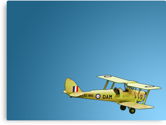 De Havilland Tiger Moth, ZK DAM by redwoodkiwi