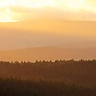 Over The Hills  by TerrillWelch