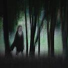 In the Forest by Jillian Merlot