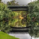 Torrens Reflections by Rod Wilkinson