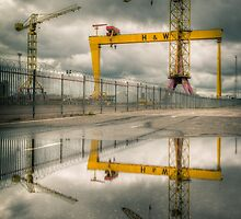 Belfast Cranes by Darren Brown