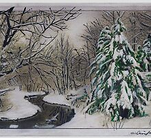 Walking in a Winter Wonderland by David M Scott