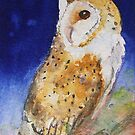 Barn Owl iPhone case by Ruth S Harris